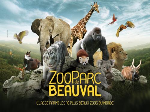 Zoo de Beauval à St Aignan sur Cher
